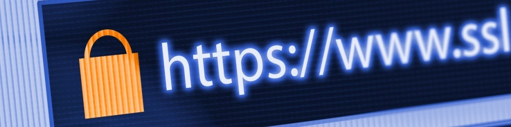 Internet browser address bar with a lock and 'https' in it